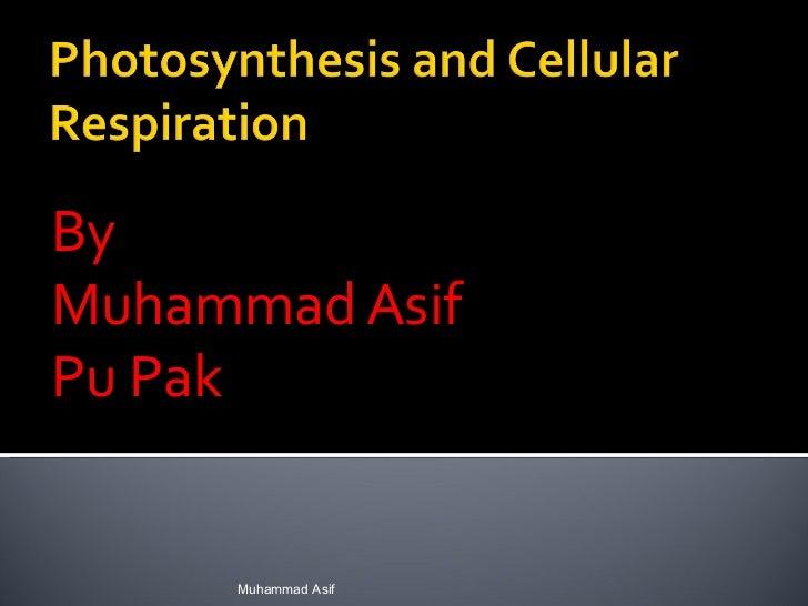 Photosynthesisand cellularrespiration