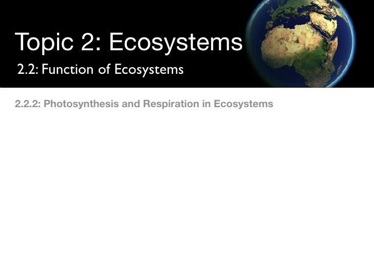 Topic 2: Ecosystems 2.2: Function of Ecosystems  2.2.2: Photosynthesis and Respiration in Ecosystems