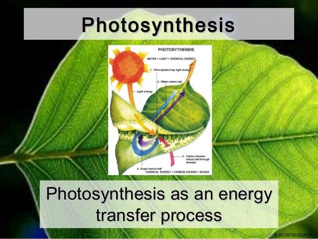 PhotosynthesisPhotosynthesis as an energy     transfer process                              ALBIO9700/2006JK