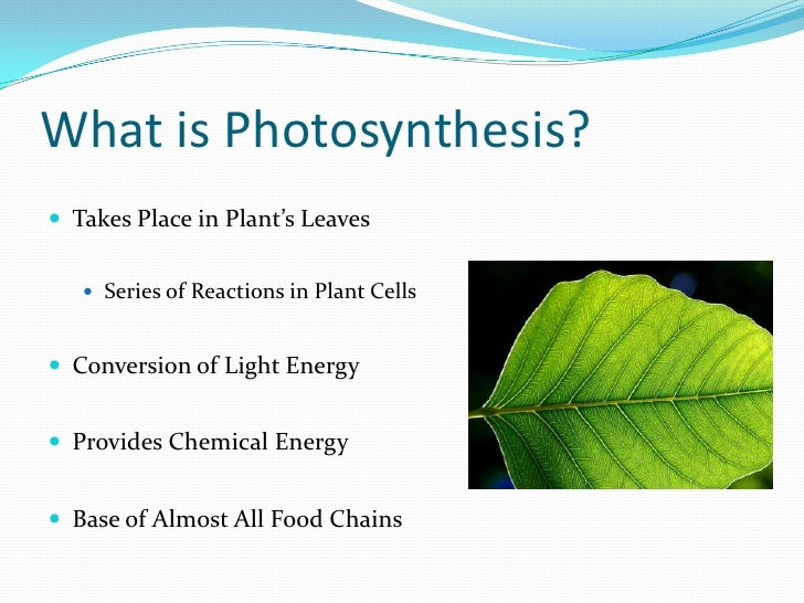 http://image.slidesharecdn.com/photosynthesispowerpoint-100301202503-phpapp01/95/photosynthesis-powerpoint-2-728.jpg?cb=1267475686