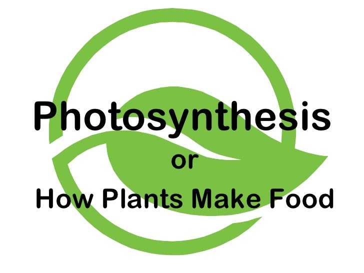 Photosynthesis or How Plants Make Food