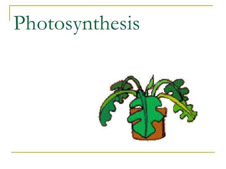 photosynthesis ppt presentation Title: photosynthesis author: jefferson county tech center last modified by: admin created date: 9/29/2004 6:45:28 pm document presentation format.