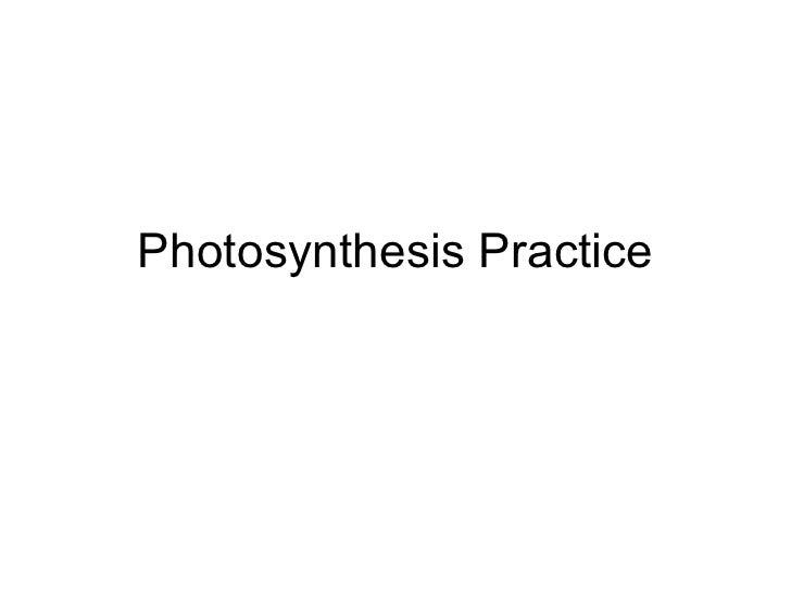 Photosynthesis Practice