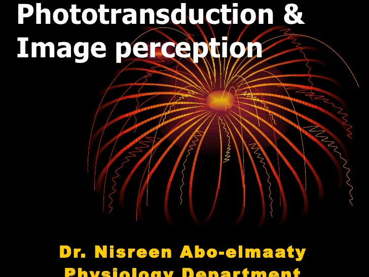 Phototransduction & Image perception Dr. Nisreen Abo-elmaaty Physiology Department