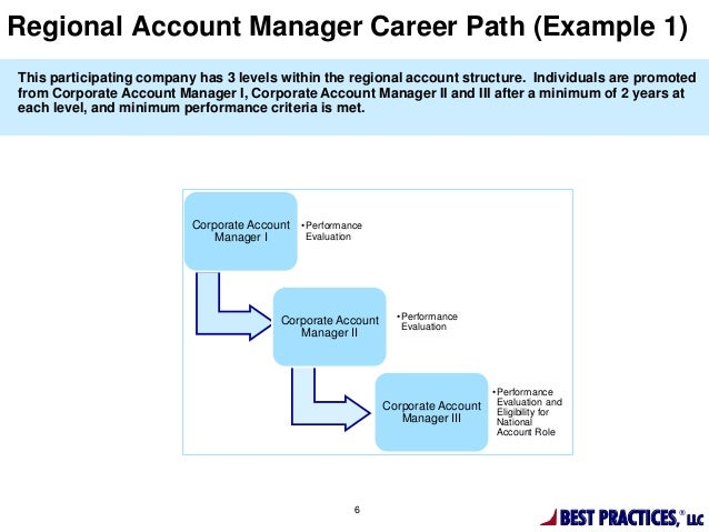 a career in accountancy essay