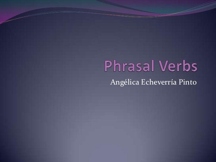 Angélica Echeverría Pinto