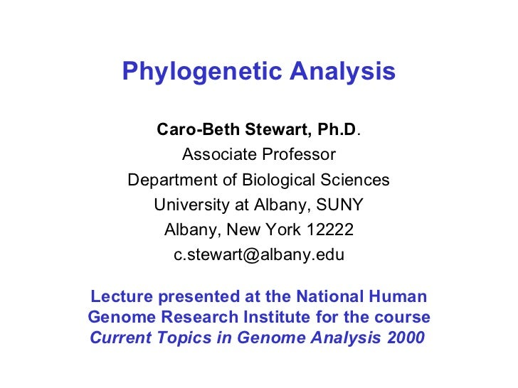 Phylogenetic Analysis Caro-Beth Stewart, Ph.D . Associate Professor Department of Biological Sciences University at Albany...