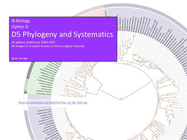 IB BiologyOption DD5 Phylogeny and SystematicsAll syllabus statements ©IBO 2007All images CC or public domain or link to o...