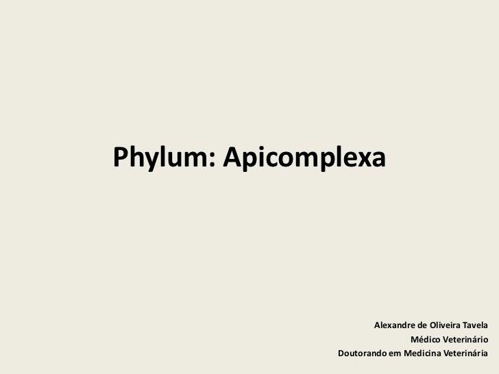 Phylum: Apicomplexa                       Alexandre de Oliveira Tavela                               Médico Veterinário   ...