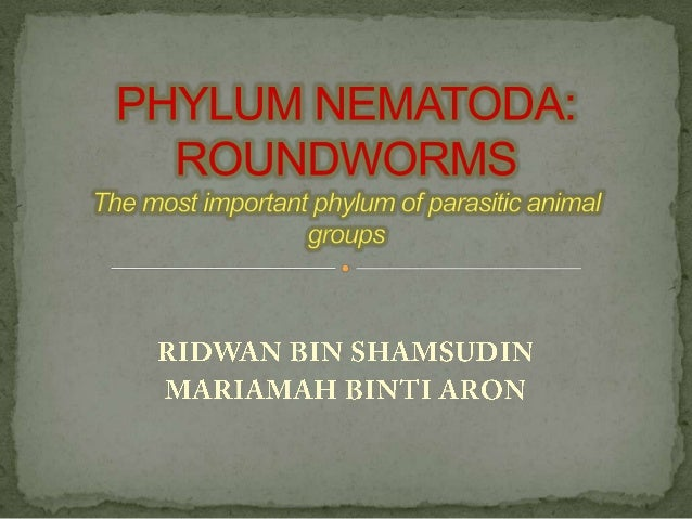 Nematodes are the most smallest ecdysozoan animals.The habitat in the sea, in fresh water and in soil. Good topsoil may ...
