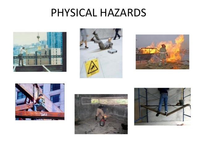 occupational health safety biological hazards essay