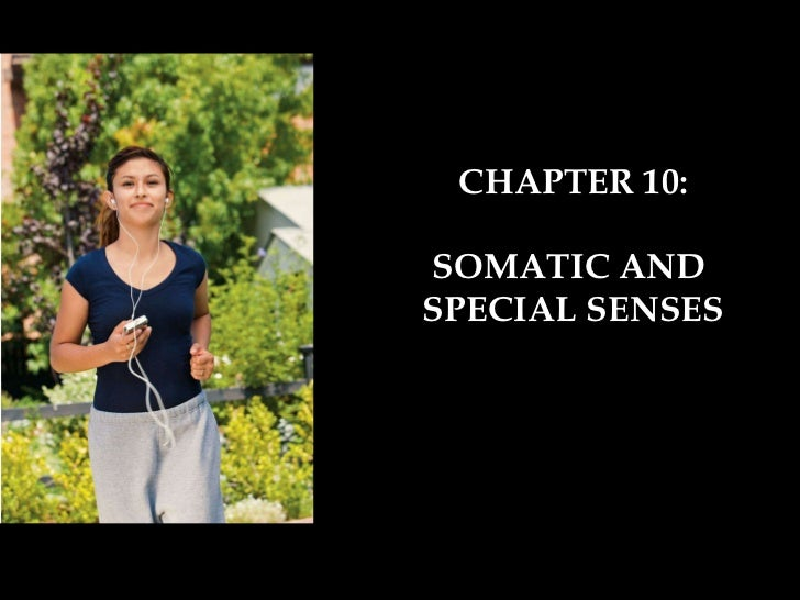 CHAPTER 10: SOMATIC AND  SPECIAL SENSES