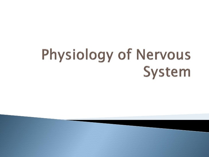    The central nervous system contains more     than 100 billion neurons.    Incoming signals enter this neuron through ...