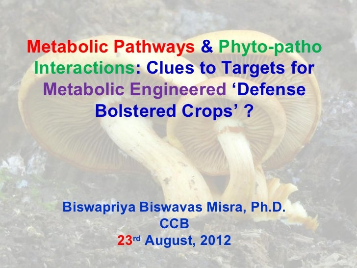 Metabolic Pathways & Phyto-patho Interactions: Clues to Targets for  Metabolic Engineered 'Defense        Bolstered Crops'...