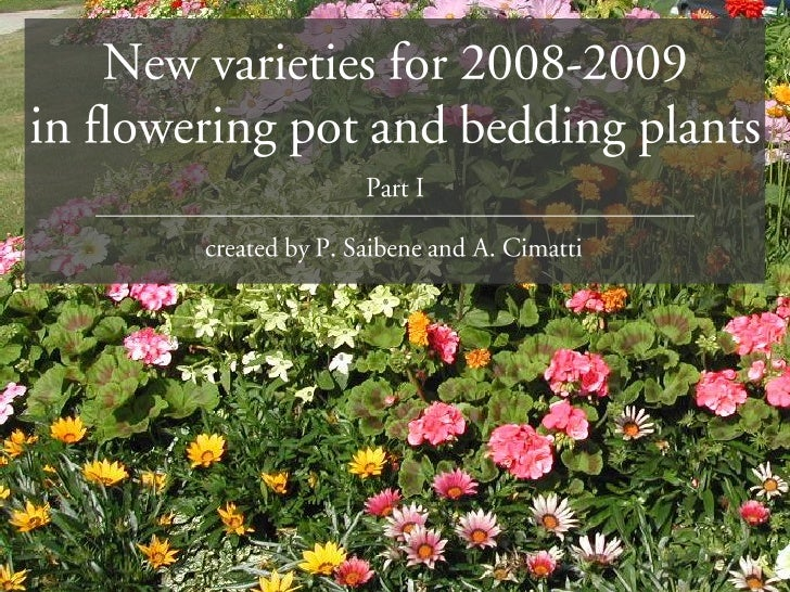 Would you like more information on new flower varieties?  Would you like expert assistance in choosing the perfect plants ...