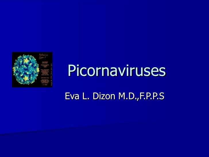 Picornaviruses Eva L. Dizon M.D.,F.P.P.S
