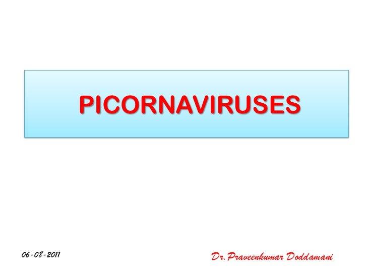 PICORNAVIRUSES06-08-2011           Dr.Praveenkumar Doddamani