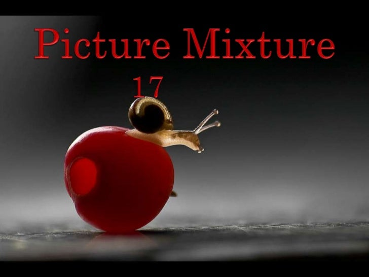 Picture Mixture<br />17<br />