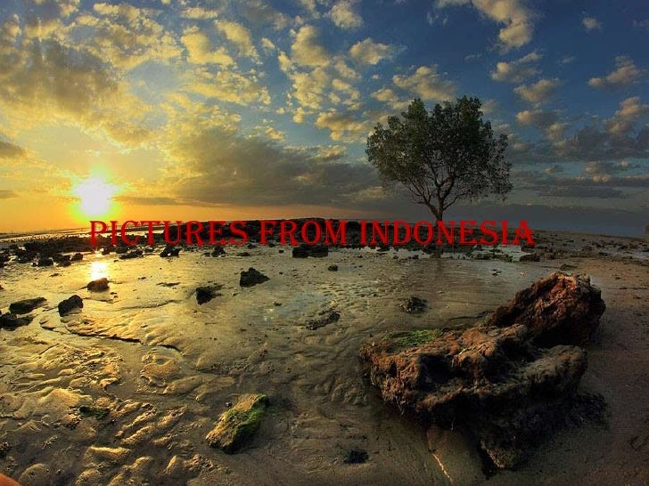 Pictures from indonesia