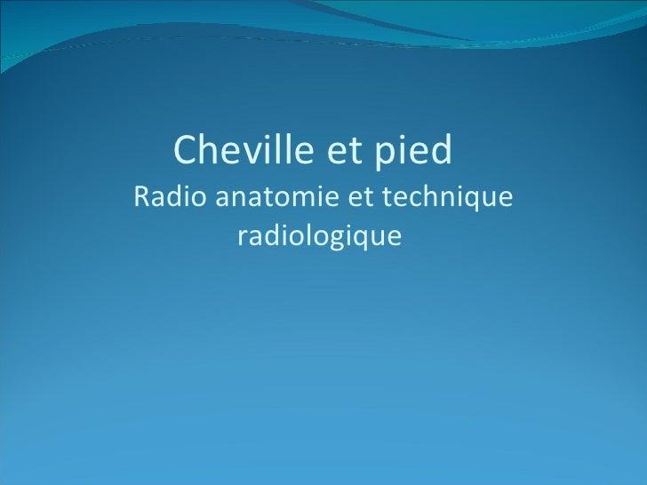 Cheville et pied  Radio anatomie et technique radiologique