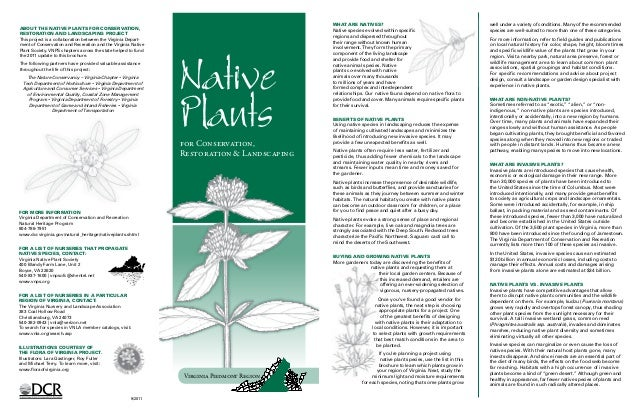 What are natives?                                                 well under a variety of conditions. Many of the recommen...