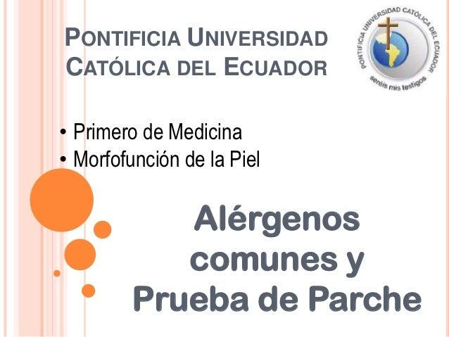 PONTIFICIA UNIVERSIDADCATÓLICA DEL ECUADOR• Primero de Medicina• Morfofunción de la Piel            Alérgenos            c...