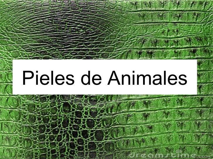 Pieles de Animales