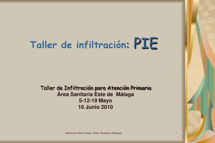 Adoración Mesa Vega  Hosp. Axarquía (Malaga)<br />1<br />Taller de infiltración: PIE<br />Taller de Infiltración para Aten...