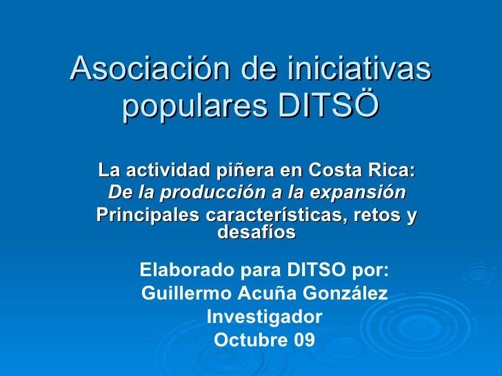 La actividad piñera en Costa Rica: De la producción a la expansión Principales características, retos y desafíos Asociació...