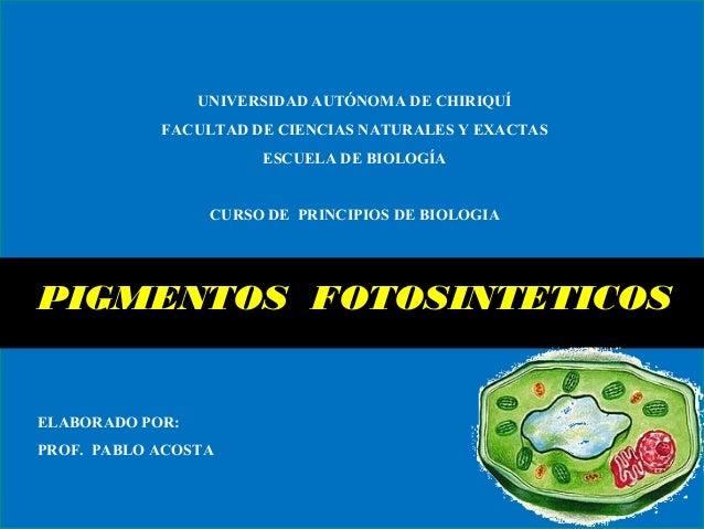 UNIVERSIDAD AUTÓNOMA DE CHIRIQUÍ FACULTAD DE CIENCIAS NATURALES Y EXACTAS ESCUELA DE BIOLOGÍA CURSO DE PRINCIPIOS DE BIOLO...