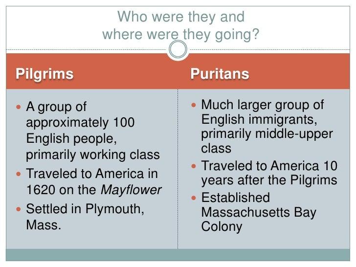 Pilgrims Vs Puritans