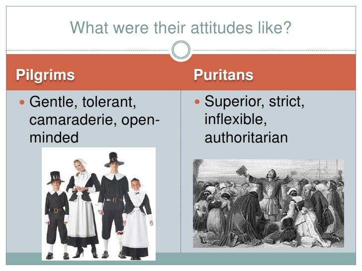 puritans vs pilgrims essays An essay by gavin finley md 1 puritan history, past, present and future an introduction to this study 2 puritans vs pilgrims similarities and differences.