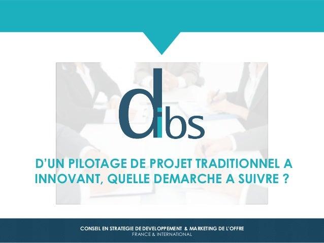 © Dibs 1 CONSEIL EN STRATEGIE DE DEVELOPPEMENT & MARKETING DE L'OFFRE FRANCE & INTERNATIONAL D'UN PILOTAGE DE PROJET TRADI...