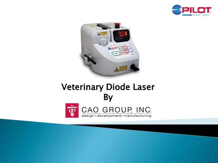 Pilot Laser Overview - CAO group