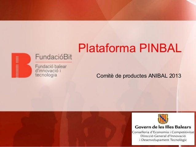 Plataforma PINBAL Comitè de productes ANIBAL 2013
