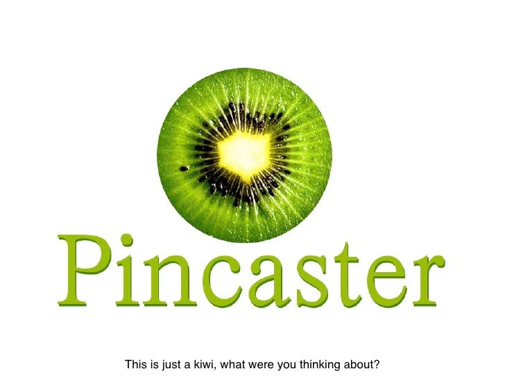 An introduction to Pincaster