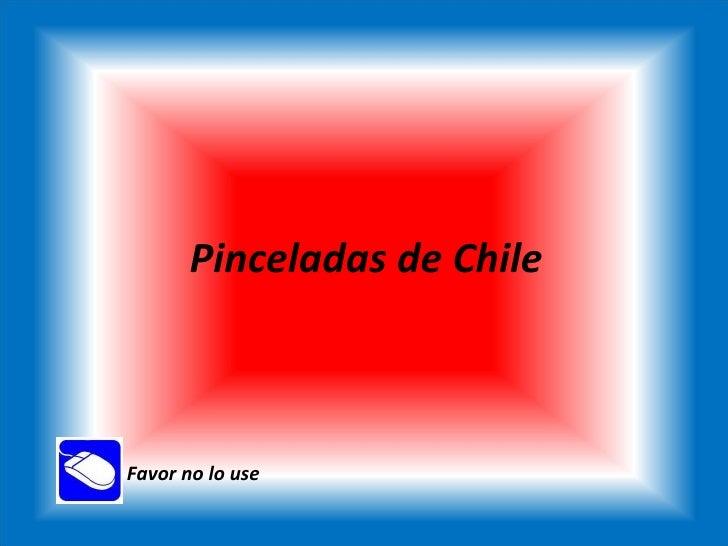 Pinceladas de Chile Favor no lo use