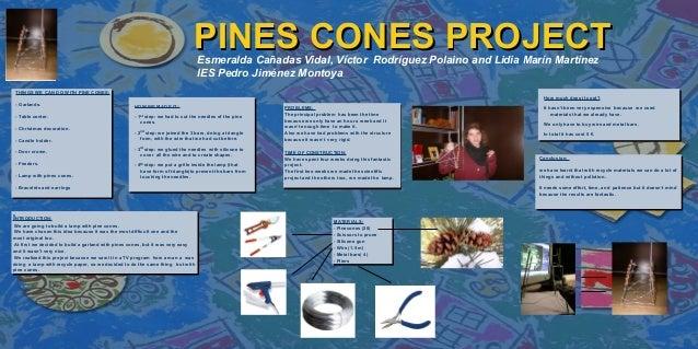 LOGO                                                                           PINES CONES PROJECT                        ...