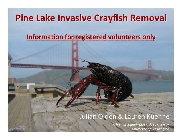 Pine Lake Invasive Crayfish Removal                                  Informa6on for registered volunteers...