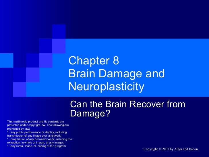 Chapter 8 Brain Damage and Neuroplasticity Can the Brain Recover from Damage? <ul><li>This multimedia product and its cont...