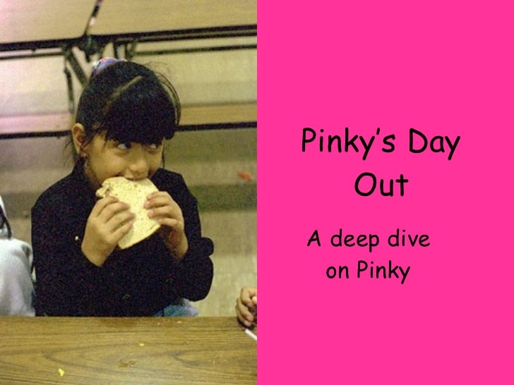 Pinky's Day Out A deep dive on Pinky