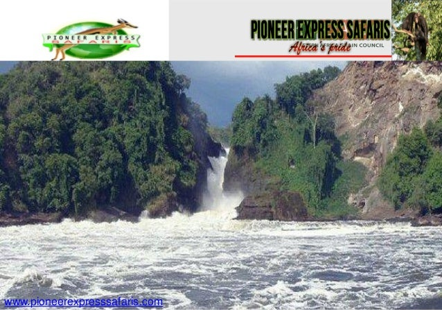 www.pioneerexpresssafaris.com
