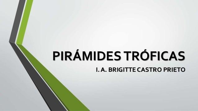 PIRÁMIDESTRÓFICAS I. A. BRIGITTE CASTRO PRIETO