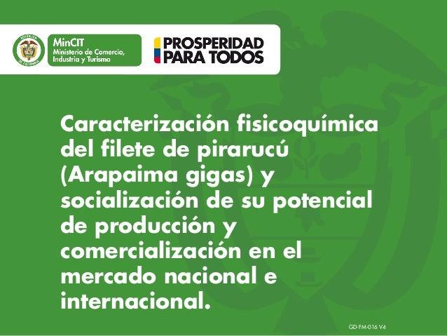Caracterización fisicoquímica del filete de pirarucú (Arapaima gigas) y socialización de su potencial de producción y comercialización en el mercado nacional e internacional