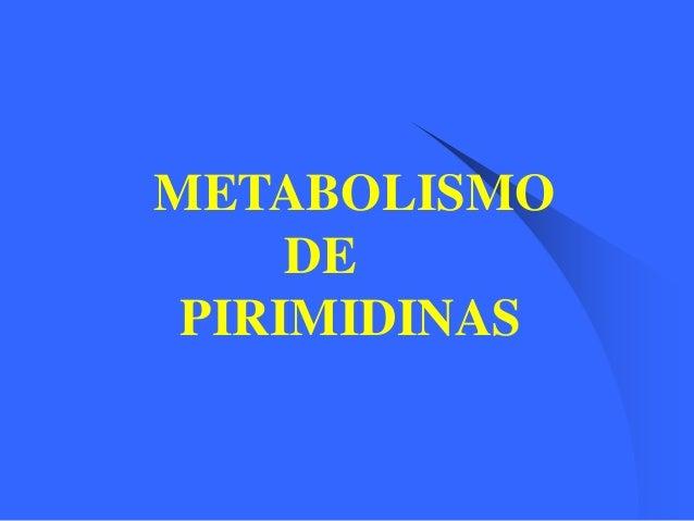 METABOLISMO DE PIRIMIDINAS
