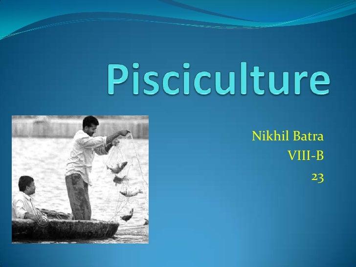 Nikhil Batra      VIII-B          23