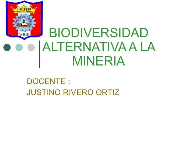 BIODIVERSIDAD ALTERNATIVA A LA MINERIA DOCENTE : JUSTINO RIVERO ORTIZ