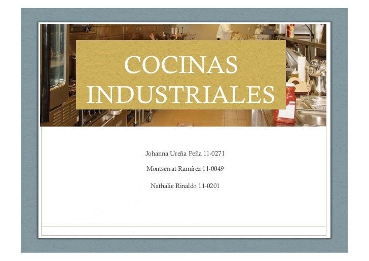 Cocinas industriales recubrimiento para pisos plaf n y for Herramientas de cocina industrial
