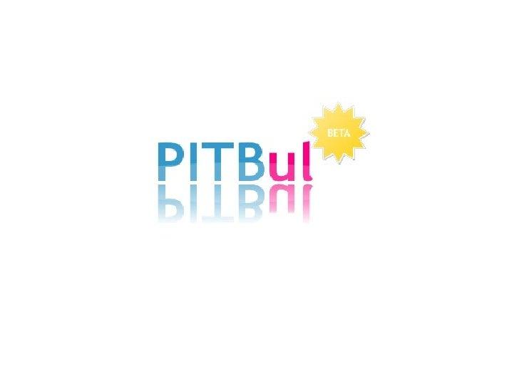 Pitbul 2008 / 6
