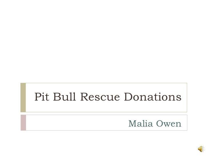 Pit Bull Rescue Donations<br />Malia Owen<br />